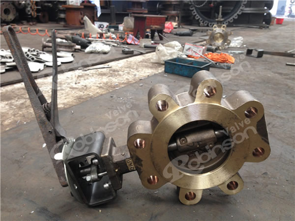 Aluminum Bronze Lever Operated  Lug  Butterfly Valve