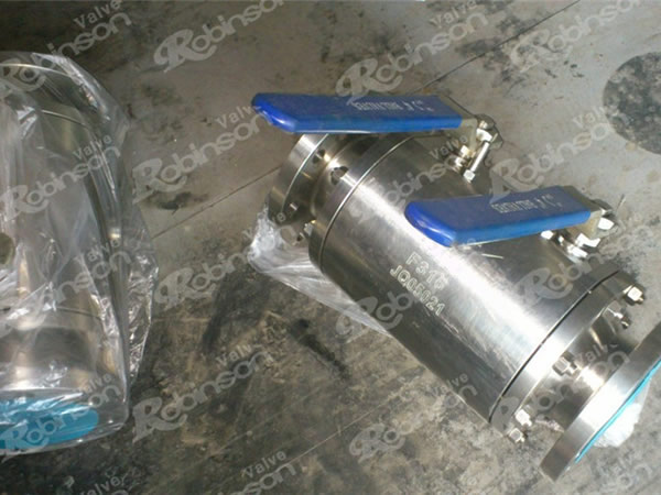 Forged Flanged Two Balls Ball Valve