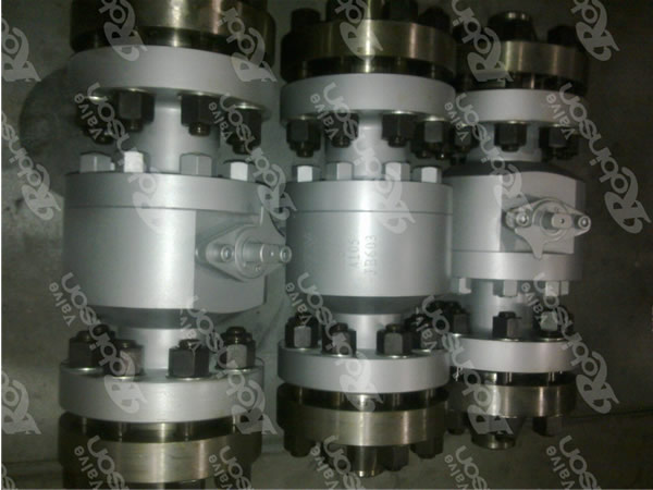 Forged Type Floating Ball Valve
